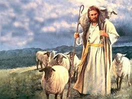 Image result for free pic of good shepherd