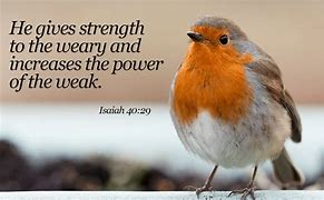 Image result for free pics HE GIVES POWER TO THE WEKA